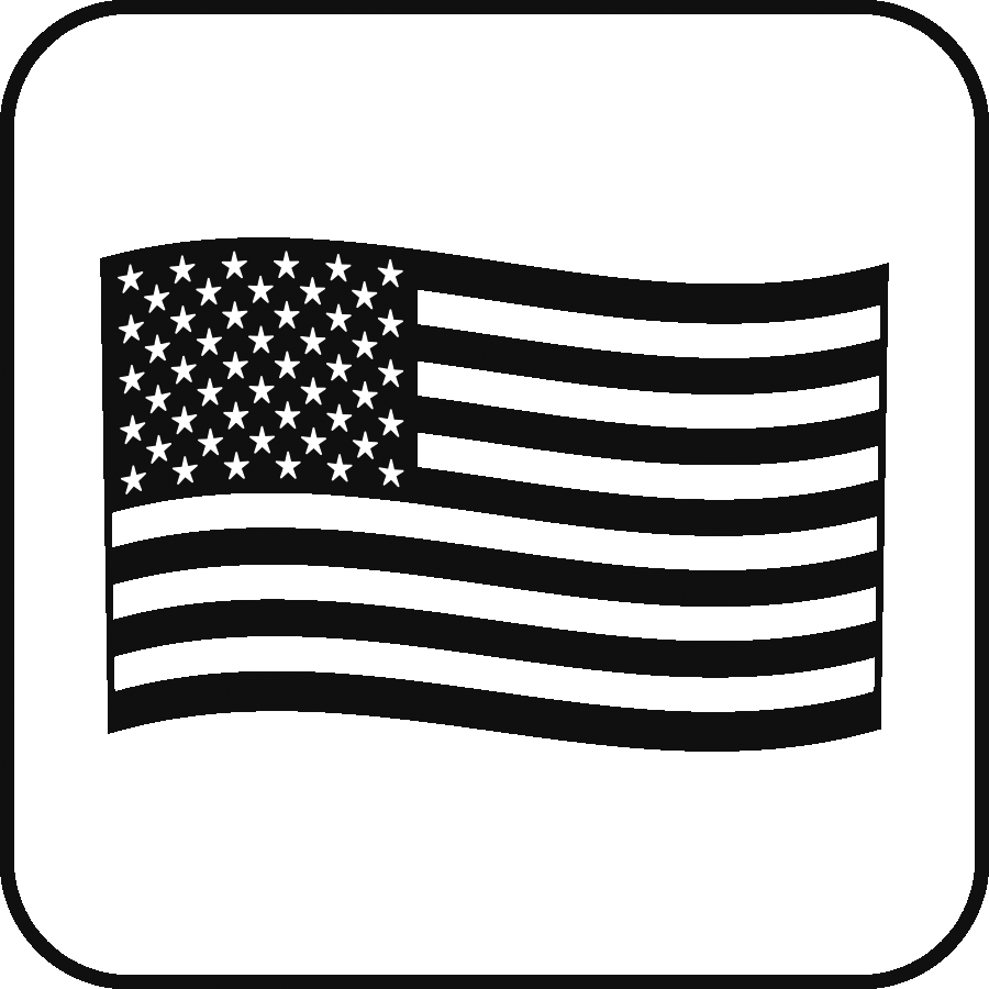 Icon: the US flag